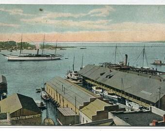 Riverfront Ships Docks Jacksonville Florida 1909 postcard