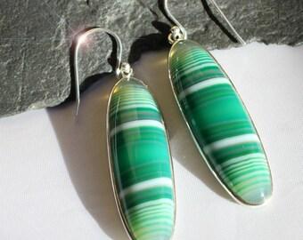 Cool Green - Beautiful Banded Agate Drop Sterling Silver Earrings