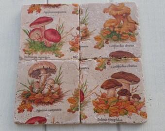 Mushroom Stone Coaster Set of 4 Tea Coffee Beer Coasters