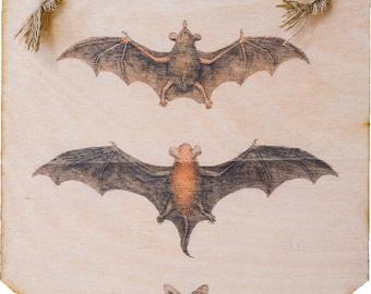 Printed Plywood Pennant | Bat Chart | Gifts under 15
