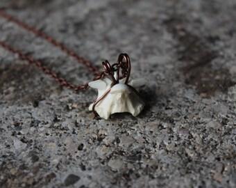 Snake Vertebrae Necklace