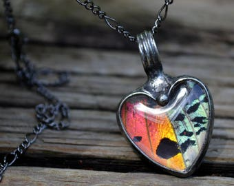 Real Butterfly Necklace, Real Butterfly Wing, Madagascar Butterfly, Heart Necklace, Butterfly Jewelry, Bright Butterfly Necklace (2766)