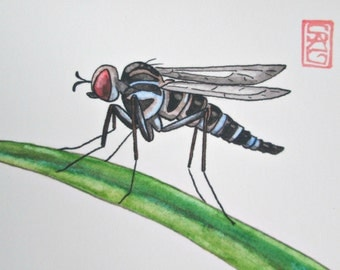 ACEO Stiletto Fly - Archival Print - Insect Art