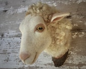 needlefelted miniature sheep head style faux taxidermy by feltfactory