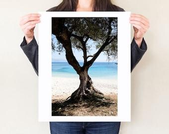 Greece landscape photography print, Kefalonia travel photograph, coastal olive tree photo. Mediterranean decor, Greek Island beach artwork