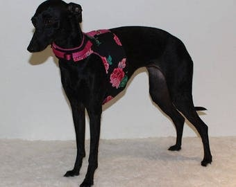 Made to order  - Italian Greyhound Harness  (measurements essential) Black with Deep Pink Rose print - see details