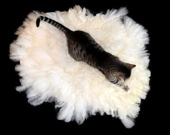 Cat Bed - Cruelty Free Felted Wool Fleece Pet Bed - Icelandic/ Nash Island - Supporting US Small Farms - Ready to Ship