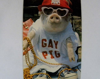 1980 Humorous Gay Pig Postcard by The American Postcard Company