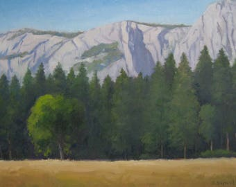 Large 16x20 California Landscape Yosemite Valley Meadow Original Oil Mountain Trees Modern Impressionist Painting Canvas Jennifer Boswell