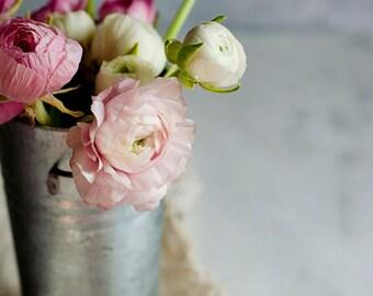 chic flower art, pink ranunculus, floral nursery art, pink and white decor, romantic floral decor, shabby wall art, girls room decor,