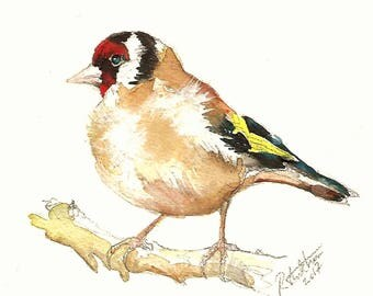 Goldfinch painting - original watercolor British birds