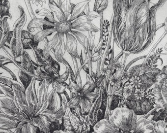 Limited edition etching 'Summer's Glory'