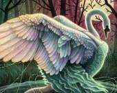 Odette Swan Princess Illustration 12x16