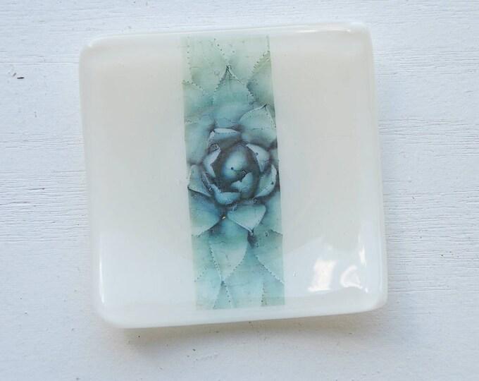 Succulent Dish / White Succulent Mini Fused Glass Dish
