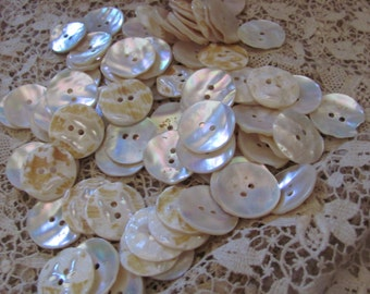 Buttons Set of 12 Matching White Ivory Shell Abalone Buttons 20mm