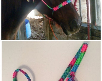 Colorful Rope Halter