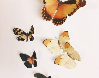 The Fall set of faux paper butterflies