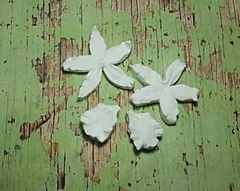 Ochid Odontoglossum Petal Double Veiner Silicone Mould Artificial Flowers