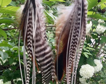 "Natural feather earrings 7-9"" long"
