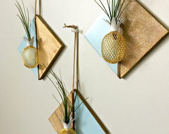 Diamond wood wall hanging with pineapple and air plant   / Tillandsia air plant/ wall decor-  blue and wood air plant display