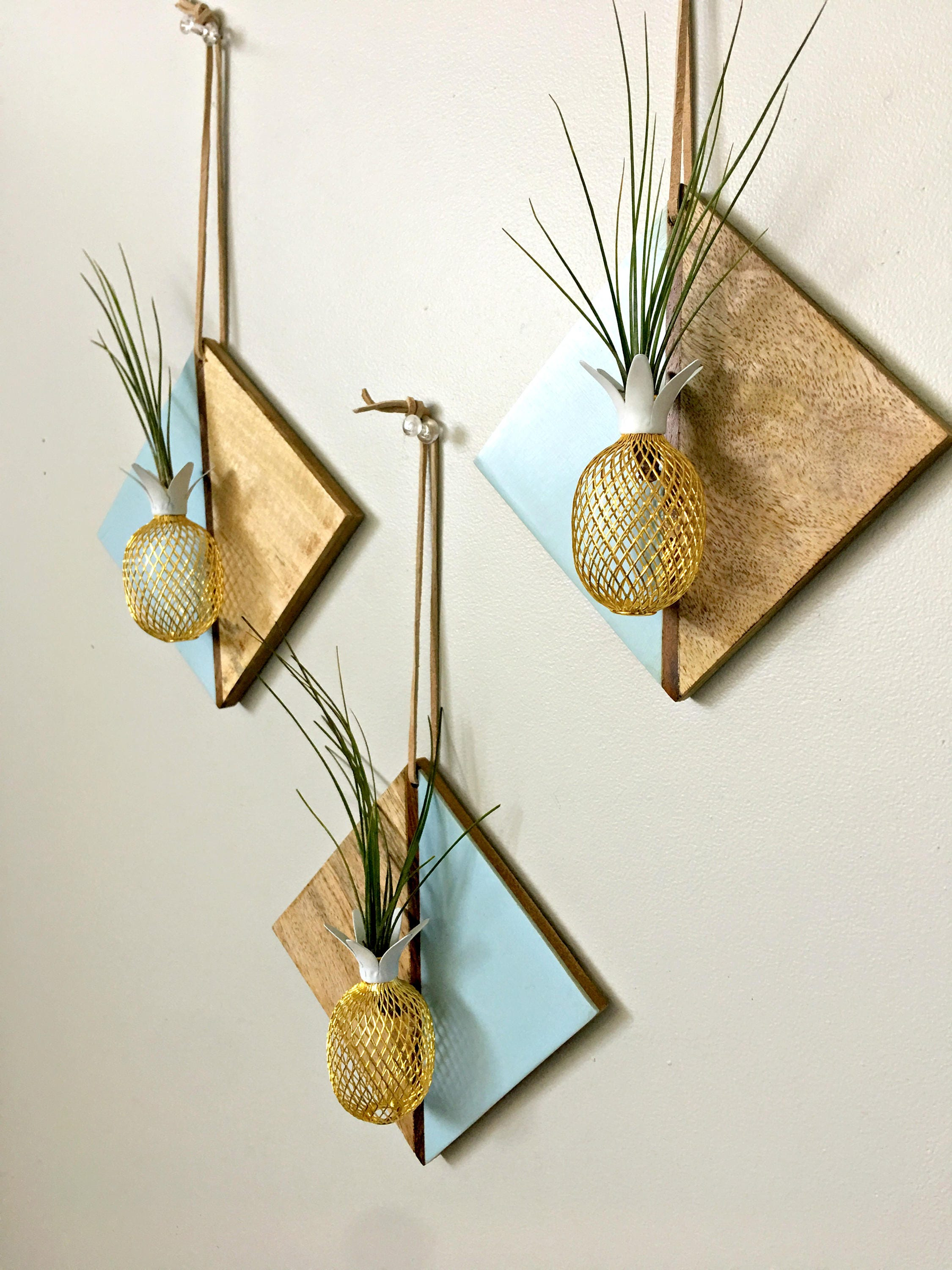 Diamond wood wall hanging with pineapple and air plant for Air plant wall hanger