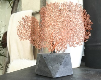 Sea Fan Sculpture - Concrete Geometric Base - Home Decor - Sea Life