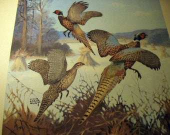 Lynn Bogue Hunt 1944 Game Birds Original Lithograph Print Ring Necked Pheasant Large Print Field and Stream Company