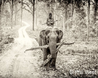 Mahout in India, in Black & White, Photo Print or Canvas 8x10, 12 x 18, 16 x 24, 24 x 36, 32 x 48