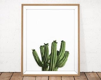 Cactus Printable, Cactus Photography, Cactus Poster, Tropical Printable, Tropical Print, Living Room Decor, Bathroom Printable, Plant Poster