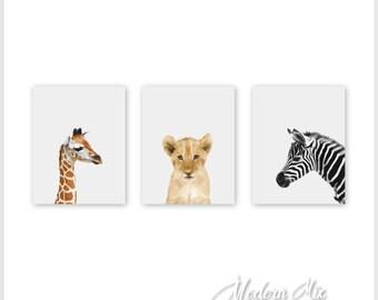 Animals Nursery Art CANVAS Art Nursery Decor Safari Wall Art Baby Animal Nursery Decoration Baby Set of 3 Canvas wraps