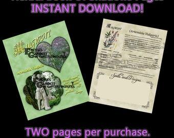 Mugwort Herbal Book Of Shadows, Herbal Witchcraft Information, Herbal Correspondences, Herbal Spells, Digital Download Herbal BOS pages