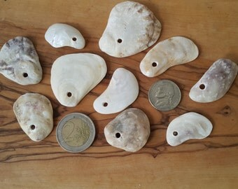 10 pieces top drilled oyster shells
