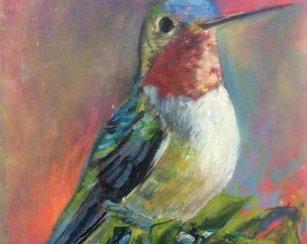 2017 SPRING STUDIO SALE : 8x10 Oil Painting of a Ruby Throat Hummingbird