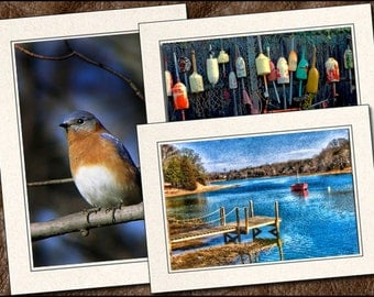 3 Nature Photo Note Card Set - 5x7 Nature Note Card - Blank Note Cards With Envelopes - Photo Greeting Cards Handmade (NA10)