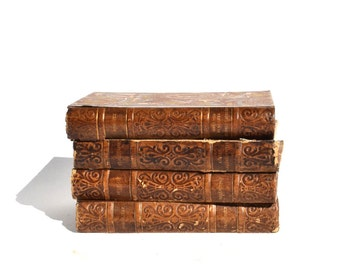 Vintage Leather French Books
