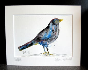 Blackbird...An original watercolour,paste and pencil painting by Suzanne Patterson