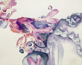 Original Watercolor Painting - Microscape - Coastal Nature Seaweed Shell Vignette - 9x12