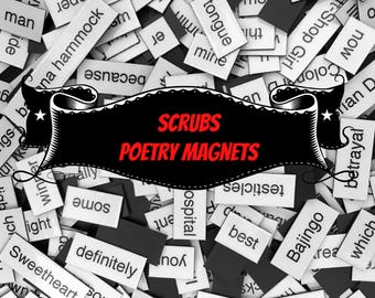 Scrubs Refrigerator Magnets, Poetry Word Magnets, Free Gift Wrap