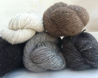 BLANKET WEIGHT 5-color pack Navajo Churro wool yarn in  White, Dark Grey, Light Grey, Brown, Black and includes a sample card