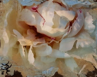 Original Mixed Media Art Collage - Peony # 4