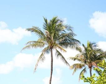 Tropical home decor Etsy