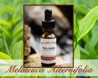 Tea Tree Essential Oil, MELALEUCA ALTERNIFOLIA, Melaleuca, Tea Tree, Aromatherapy, Essential Oil, Melaleuca Essential OIl