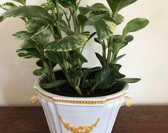 "Vintage Italian White and Golden Yellow Ceramic 6"" Planter Pot"