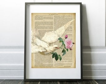 Dove with Roses, vintage French book, book art print, Digital Download, Printable Art, Home Decor,