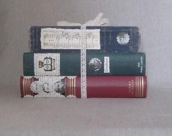 Altered Book Bundle, Decorative Books