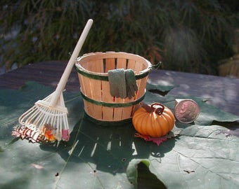 Autumn Clean-Up