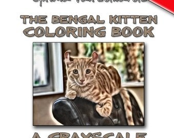 The Bengal Kitten Coloring Book A Grayscale