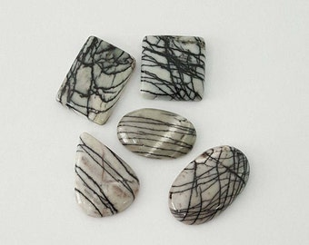 5 pcs Lot of Spider Web Jasper Cabochon