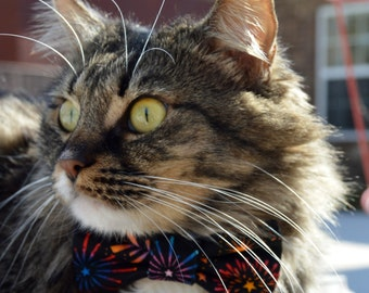 New Years cat bow tie, New Years cat collar, celebration cat bow tie, Cat Collar, Cat bow tie, party cat bow tie, kitten bow tie collar,