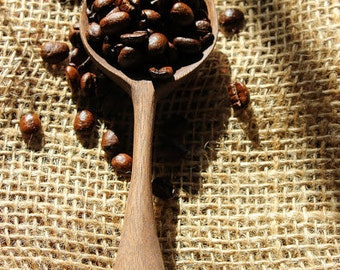 Beautiful Walnut Coffee Scoop